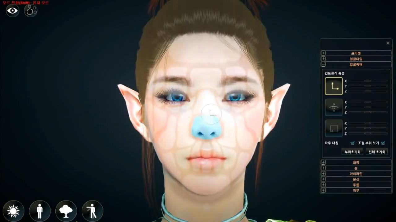 Face Customization